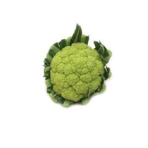 broccolo di sicilia